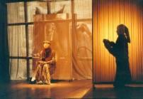 Paseantes 2003 (puesta y dirección)